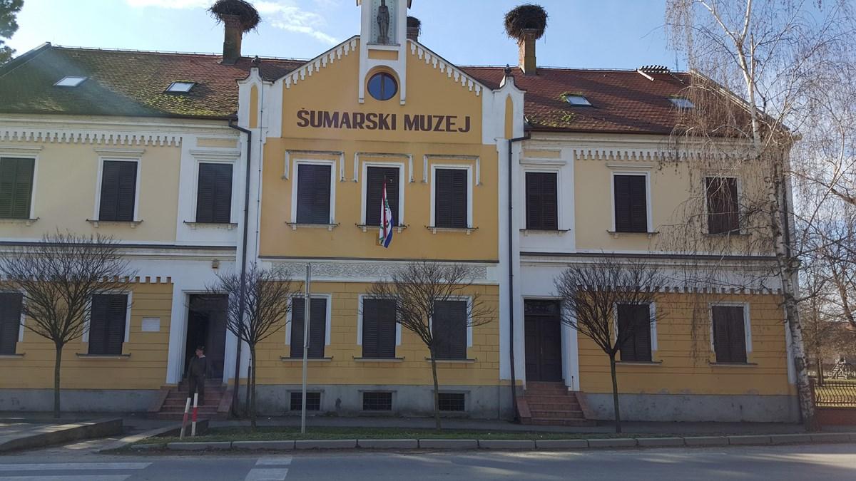 Šumarski muzej